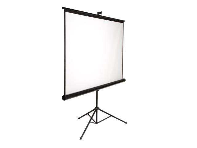 Where to find 7  X 7  PROJECTOR SCREEN in Mishawaka