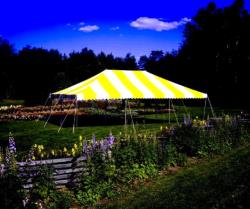 Rental store for 20 X30  Y W POLE TENTS in Mishawaka IN