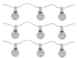 Rental store for 100  STRAND LIGHT  2  BULB in Mishawaka IN