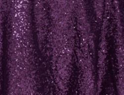 Rental store for EGGPLANT SEQUIN LINEN in Mishawaka IN
