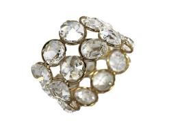 Rental store for CRYSTAL GOLD NAPKIN RING in Mishawaka IN