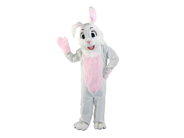 Rent Easter Bunny Costume